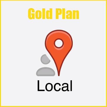 Local SEO Gold plan