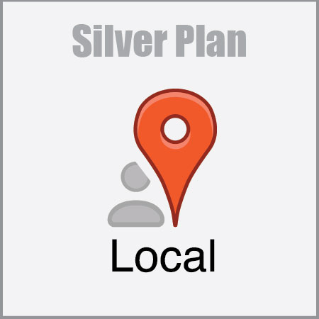 Local SEO Silver Plan