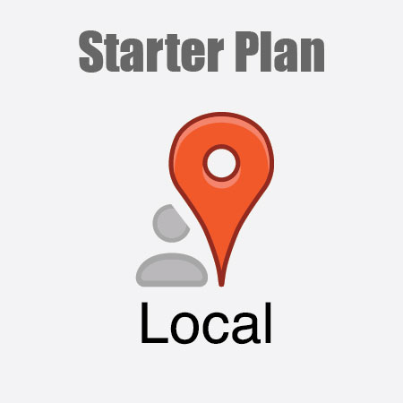 Local SEO Marketing Starter